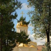 Это тоже вид в Троице-Сергиевой лавре :: Елена Мартынова