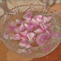 Плескались розовые лепестки... :: Нина Корешкова