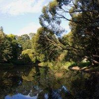 В сентябрьском парке :: валерия