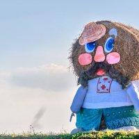 Вот такое странное существо с некоторых пор стало встречать въезжающих в Шумилино с стороны Витебска :: Анатолий Клепешнёв