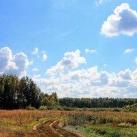 Но сменит солнце дождевой туман... :: Лесо-Вед (Баранов)
