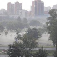 В дымке тумана :: Валентина Папилова