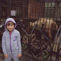 В зоопарке :: Эльвира Разина