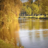 Вот и осень пришла... :: Данила Бондаренко