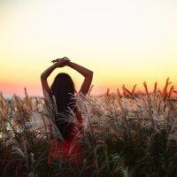 Sunset :: Екатерина Дулова