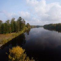 Северная река. :: Алексей Хаустов