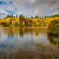 Осенний зарисовки :: Сергей Винтовкин