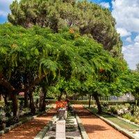 В саду :: Witalij Loewin