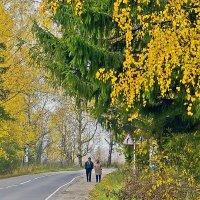 Осень на двоих :: Валерий Талашов