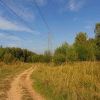 Когда иду я Подмосковьем IMG_0294 :: Андрей Лукьянов