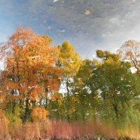 Художница-Осень.../картина первая/ :: Андрей Вестмит