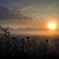 Долгожданный сентябрьский рассвет... :: Андрей Войцехов