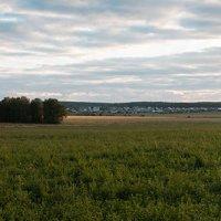 Панорама летнего вечера на Среднем Урале :: Евгений