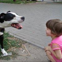 """""""Хорошая собачка!» :: Нина Корешкова"""