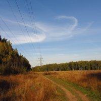 Еще немного тепла IMG_0686 :: Андрей Лукьянов