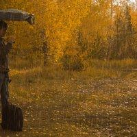 Дождь :: Роман Кондрашин