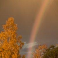 Осенняя радуга :: Роман Кондрашин