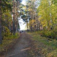 Осень :: Ирина Сазонова