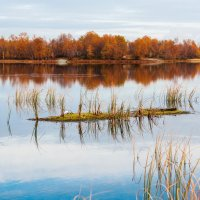 Заполярная осень :: Sergey