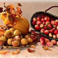 Осени последние штрихи :: galina tihonova