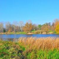 Осень на реке Рось. :: Vladimir Kushpil