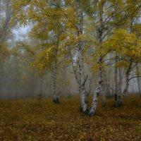 Осень :: Сергей Брагин