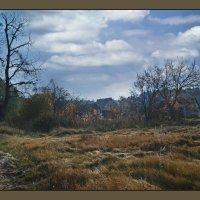 Жизнь среди леса :: Тарас Грушивский