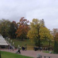Осень ... :: Ludmil Sams