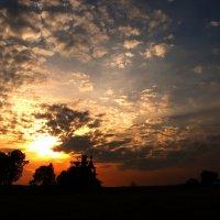 На закате дня. :: Лазарева Оксана