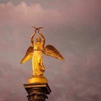 Ангел :: Mari - Nika Golubeva -Fotografo