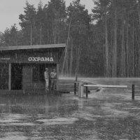 ...и кто к нам приедет в такую погоду? :: Ольга Нарышкова