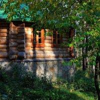 Этот домик в лесу затерялся... :: Галина Стрельченя