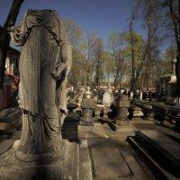 Вечный страж вечности :: Георгий Шелест