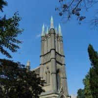 Церковь в Торонто в облаке стрекоз... :: Юрий Поляков