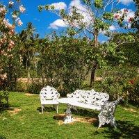 Райский садик :: Alex