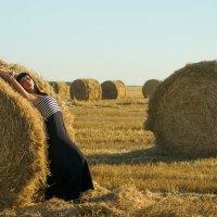 Солнце августа :: Dina Ross