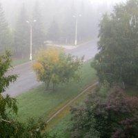 Туман на моей улице . :: Мила Бовкун