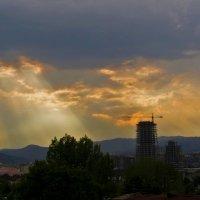 По небу солнце разливает краски. :: Наталья Джикидзе (Берёзина)