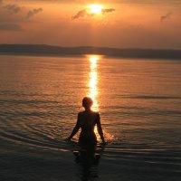 Вечернее купание :: Gennadiy Karasev
