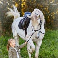 Пошли лошадка кататься ... :: Александр Ефремкин