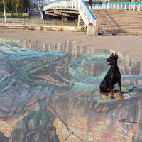 Рой и дракон :: Виктор П.