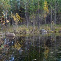 Лесное озеро :: Игорь Чубаров