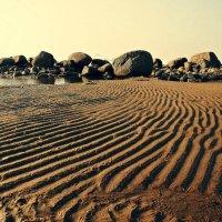 Берег залива :: Полина