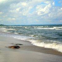 Холодная Балтика :: Сергей Карачин