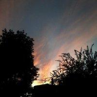небо :: Ая Хэйс