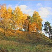 Осеннее золото. :: Роланд Дубровский