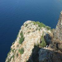 Скала и море :: Елена Лукожева
