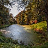 Сентябрь в Ясной Поляне. :: Горбушина Нина
