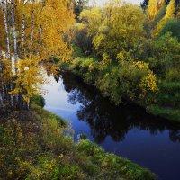 Березки у ручья :: Виталий Житков