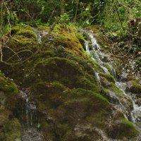 горный водопад :: Yulia Sherstyuk